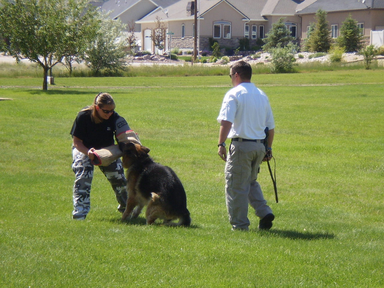 Detaining Training